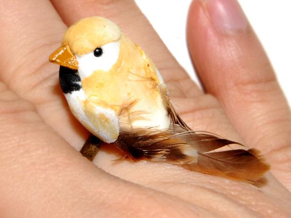 yellow-birdie-1